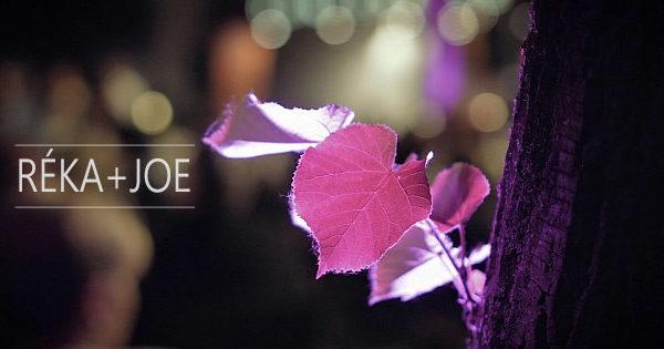 Esküvői videó | Kecskemét, Sheraton Hotel | Réka+Joe | ACS Media